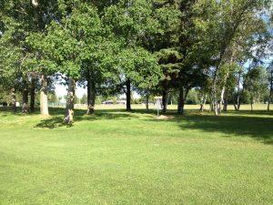 Disc Golf 4